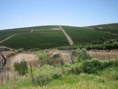 Durbanville District