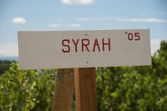 Washington Syrah