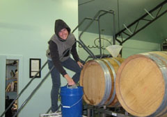 Winemaker Anna Schafer working hard at àMaurice Cellars