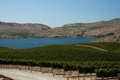 Spectacular view of Lake Chelan from Benson Vineyards Estate Winery